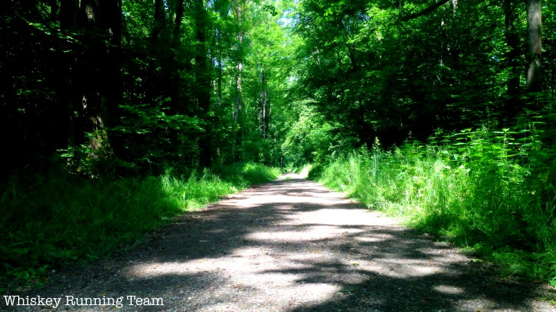 Waldweg nach Gottenheim