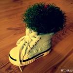 Rennkrümels Schuh