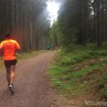 2. Schwarzwälder Schinkenlauf