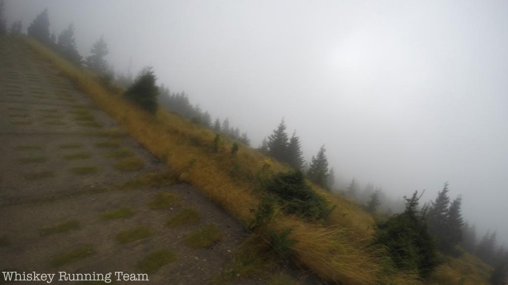Brockenlauf 2015 - Hirtenstieg