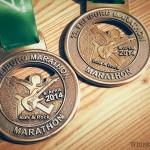 Freiburg Marathon 2014