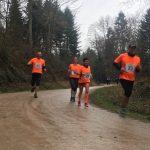 Sulzburger Frühlingslauf 2018
